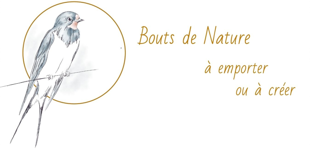 artisanat créations nature broderie